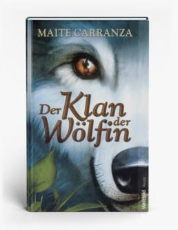 Buchtitelillustration (Weltbild Verlag)