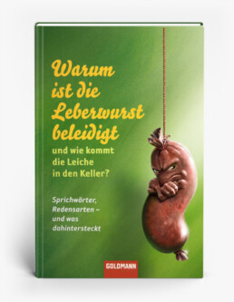 Buchtitelillustration (Goldmann Verlag)